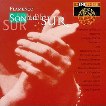 Halvkugle kunstnere - Flamenco-søn Del Sur [CD] USA importerer