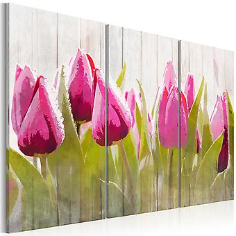 Canvas Print - Spring bouquet of tulips