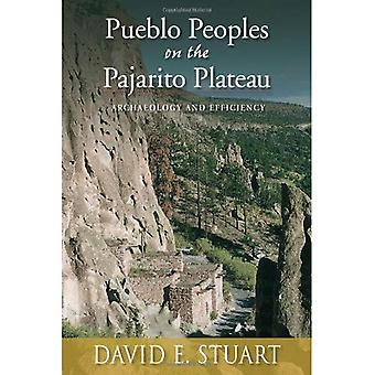 Pueblo Peoples on the Pajarito Plateau: Archaeology and Efficiency