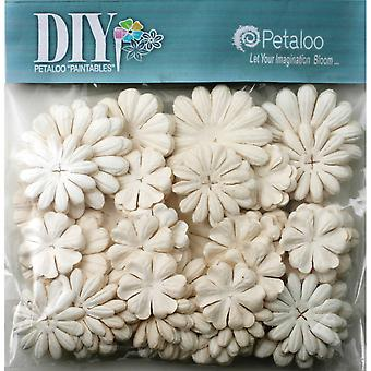 DIY Paintables Mulberry Blume