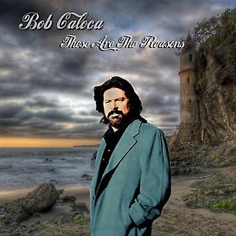 Bob Caloca - import USA te powody są [CD]