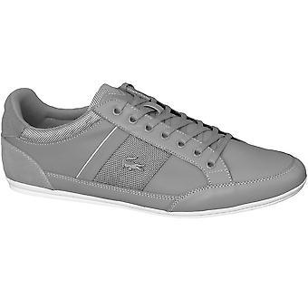ラコステ Chaymon 116 SPM00802G2 普遍的なすべての年の男性靴