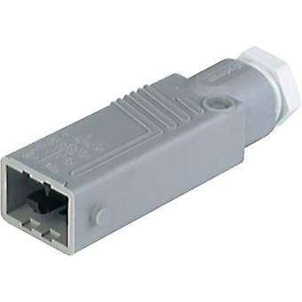Mains connector STAS Series (mains connectors) STAS Plug, straight Total number of pins: 5 + PE 6 A Grey Hirschmann STAS