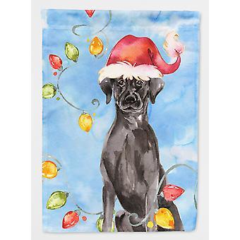 Christmas Lights Black Labrador Retriever Flag Canvas House Size