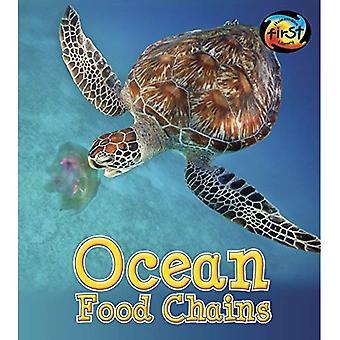 Catene alimentari di oceano (catene alimentari e ragnatele)