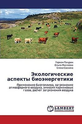 Ekologicheskie Aspekty Bioenergetiki by Pachurin Gerhomme