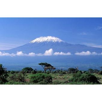 Afrika Tanzania Mt Kilimanjaro landskap og sebra Poster trykk av Gavriel Jecan