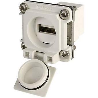 USB-flange set option 6 Connector, mount J00020A0480 Light grey Telegärtner J00020A0480 1 pc(s)