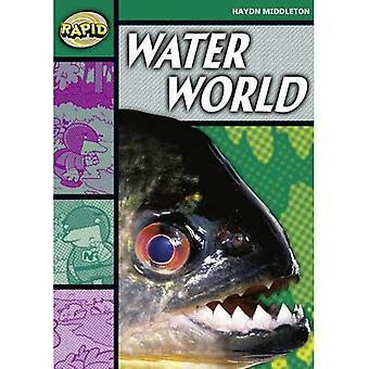 Water World: Stage 5 Set B (Rapid)