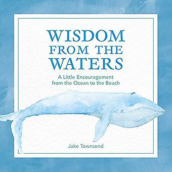 Visdom från vatten