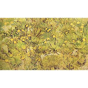 A Field of Yellow Flowers, Vincent Van Gogh, 34.5 x53cm