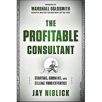 The Profitable Consultant - Starting - Growing - and Selling Your Expe
