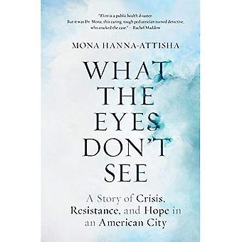 Was die Augen nicht sehen: eine Geschichte der Krise, Widerstand und Hoffnung in einer amerikanischen Stadt