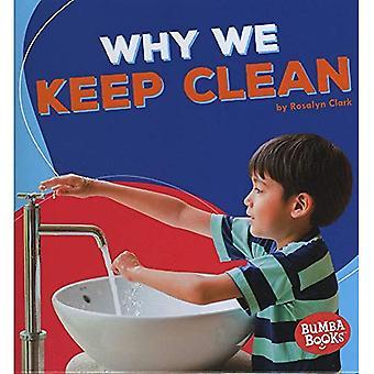 Why We Keep Clean (Bumba Books Health Matters)