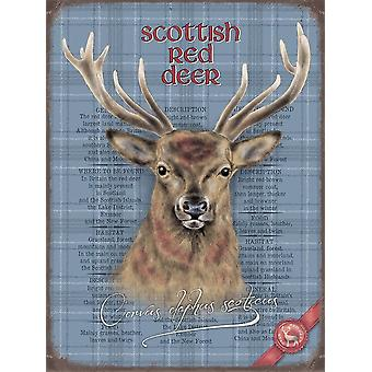 Medium Wall Plaque 200mm x 150mm - Stag