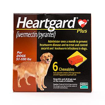 Heartgard Plus (brun) Chewables for hunde 51-100lbs(23-45kg), 6 Pack