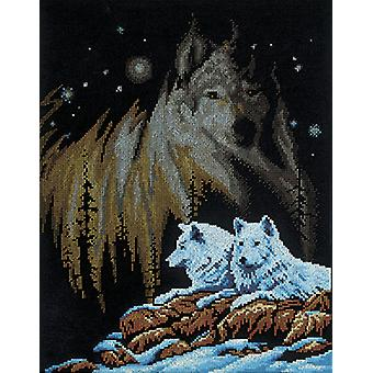 Northern Lights Counted Cross Stitch Kit-11