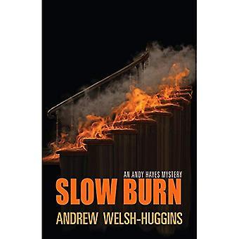 Slow Burn Sie (Andy Hayes Mysteries)