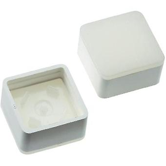 Switch cap White Mentor 2271.1010