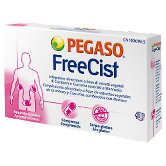 Pegaso Freecist 15Comp.