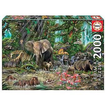 Educa African Jungle Puzzle 2000 Pieces (Toys , Boardgames , Puzzles)
