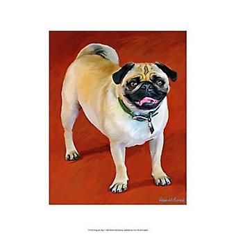 Doug the Pug Poster Print by Robert McClintock (13 x 19)