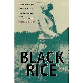 Czarny ryż: Afryki pochodzenie uprawy ryżu w Ameryce