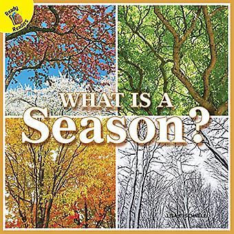 Wat Is een seizoen? (Mijn wereld)