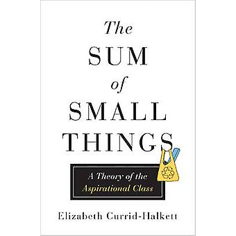 The Sum of Small Things - A Theory of the Aspirational Class by Elizab