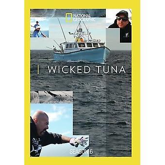Wicked Tuna Season 6 [DVD] USA import