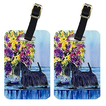 Carolines Treasures  SS8309BT Pair of 2 Scottish Terrier Luggage Tags