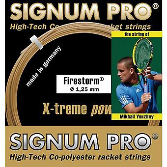 Signum Pro firestorm single set 12 m