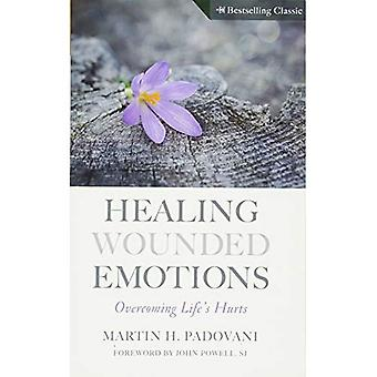 Healing Wounded Emotions: Overcoming Life's Hurts (Inspirational Reading for Every Catholic)