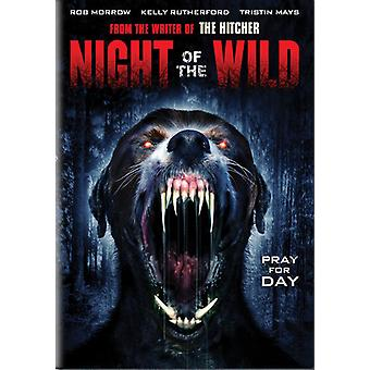 Nat vilde [DVD] USA importen