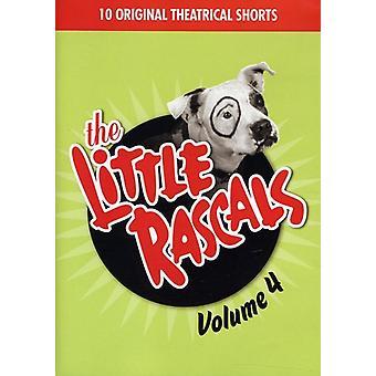 Lille slyngler - lille slyngler: Vol. 4 [DVD] USA import