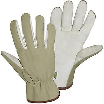 Polyamide Garden glove Size (gloves): Women's sizes