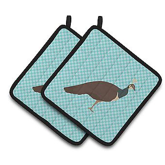 Indian Peahen Peafowl Blue Check Pair of Pot Holders