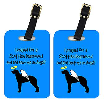 Carolines Treasures  AN1071BT Pair of 2 Scottish Deerhound  Luggage Tags