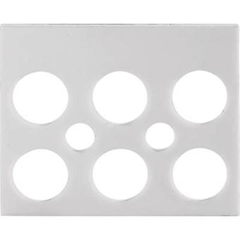 Label strip Adels-Contact 191312 White 1 pc(s)