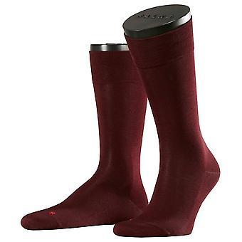 Falke Sensitive Malaga Socks - Barolo Burgundy