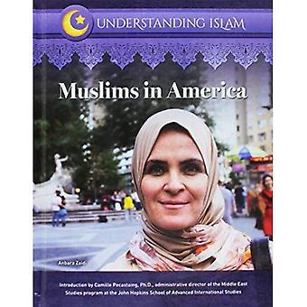 Muslims in America (Understanding Islam)