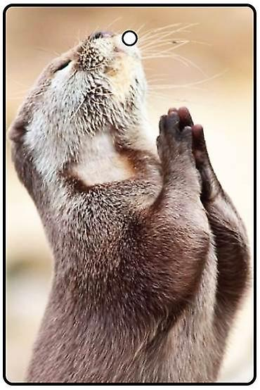 Praying Otter Car Air Freshener