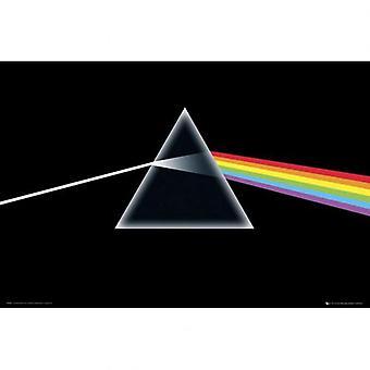 Pink Floyd Poster 236