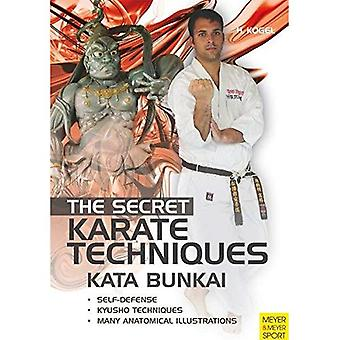 The Secret Karate Techniques: Kata Bunkai