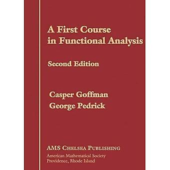 A First Course in Functional Analysis (AMS Chelsea Publishing)