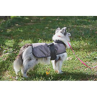 Dog Artic Coat-Grey Large 752566