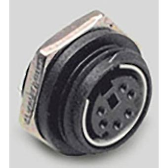 Mini DIN connector Socket, vertical vertical Number of pins: 6 Black BKL Electronic 0204037 1 pc(s)