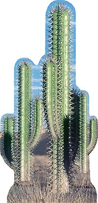 Cactus Group (Western Themed) - Lifesize Cardboard Cutout / Standee