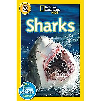 Sharks (National Geographic Readers)
