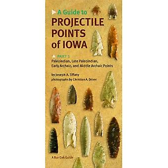 A Guide to Projectile Points of Iowa: Paleoindian, Late Paleoindian, Early Archaic, and Middle Archaic Points Pt.1 (Bur Oak Guide) (Bur Oak Guides)